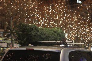 Weihnachtsbaum auf Auto